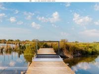 honlapok készítése Sopronban